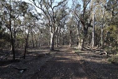262, 2401 Lumley Rd Lake Bathurst NSW 2580 - Image 3