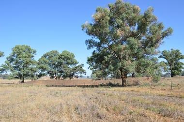 """seuters"" Pt ""yerami"", Castlereagh Hwy & 705 Springfield Ln, Gulgong NSW 2852 - Image 1"