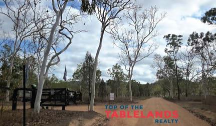 555 Wild River Rd Millstream QLD 4888 - Image 2