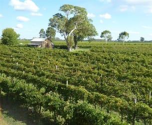 11 Maaoupe Road Coonawarra SA 5263 - Image 1