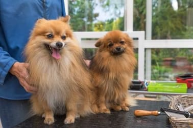 Animal Related  business for sale in Mosman - Image 1