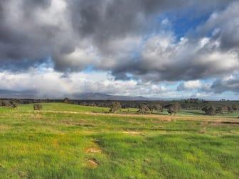 0 Adelaide Hills Road Moyston VIC 3377 - Image 3
