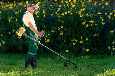 Gardening  business for sale in Melbourne - Image 3