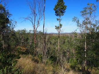 LOT 39 NIELSONS ROAD Good Night QLD 4671 - Image 2