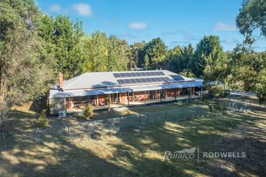 2500 MANSFIELD-WHITFIELD ROAD Tolmie VIC 3723 - Image 2