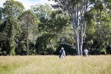 595 Mooloo Road Mooloo QLD 4570 - Image 2