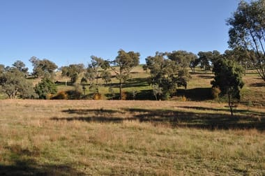 289 Spring Creek  Road Young NSW 2594 - Image 1