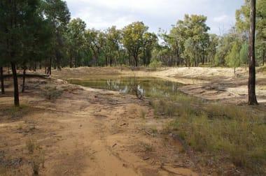 709 Tuppiari Road Narrabri NSW 2390 - Image 2