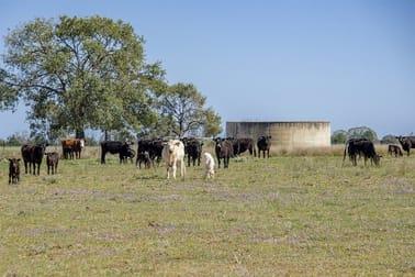651 WANGMANS ROAD Baradine NSW 2396 - Image 2