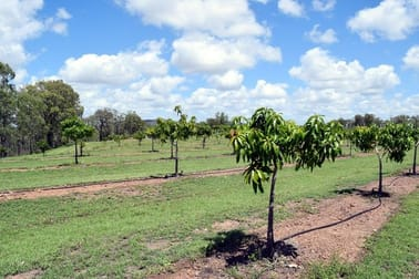221 Beronne Road Gayndah QLD 4625 - Image 3