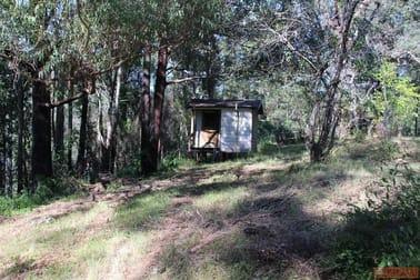 1380 Caparra Road Caparra NSW 2429 - Image 3