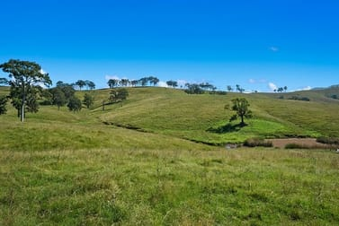 1620 Bingleburra  Road East Gresford NSW 2311 - Image 1