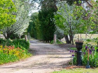 124 Bangadilly Road Canyonleigh NSW 2577 - Image 3