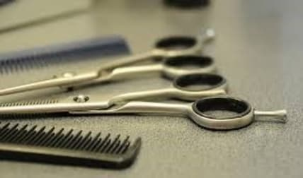 Hairdresser  business for sale in Modbury North - Image 2