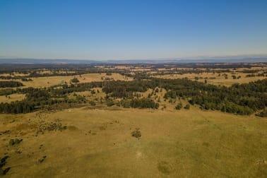 850 Dyrring Road Singleton NSW 2330 - Image 2