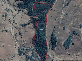 Lot 56 Off Green Hills Road Cannon Creek QLD 4310 - Image 2
