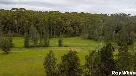 453 Failford Road Failford NSW 2430 - Image 2