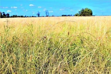 """RANNOCH"" 217.40 hectares, 537.20 acres Chinchilla QLD 4413 - Image 1"