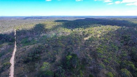 7904 Nerriga Road Braidwood NSW 2622 - Image 2
