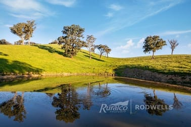 1231 Howes Creek Road Mansfield VIC 3722 - Image 2