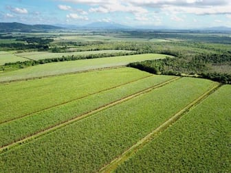 Cane Farms Innisfail QLD 4860 - Image 2