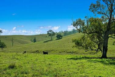 1620 Bingleburra  Road East Gresford NSW 2311 - Image 2