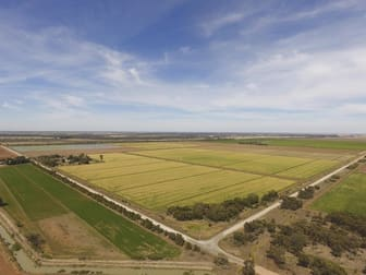 Griffith NSW 2680 - Sold Rural & Farming   Commercial Real