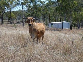 909 Hills Road Mount Maria QLD 4674 - Image 1