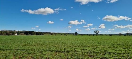 Carwilla, 149 Alleyns Road Wagga Wagga NSW 2650 - Image 2