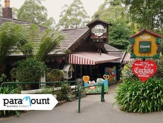Leisure & Entertainment  business for sale in Olinda - Image 1
