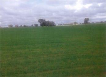 Cnr Twenty Four Lane and Hillside Road Moama NSW 2731 - Image 1
