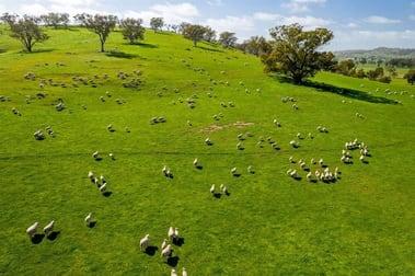 Murrawolga Oura Road Wagga Wagga NSW 2650 - Image 3