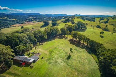 149 Friday Hut Road Coorabell NSW 2479 - Image 2