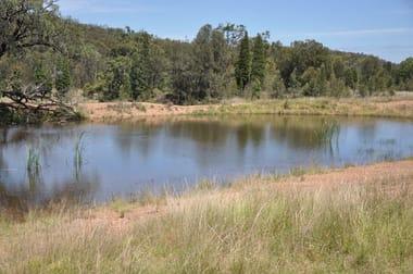 Lot 7 Ferndale Road Yarrawa NSW 2328 - Image 2