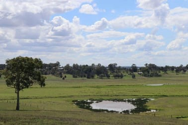 93 Valley View Lane Louth Park NSW 2320 - Image 2