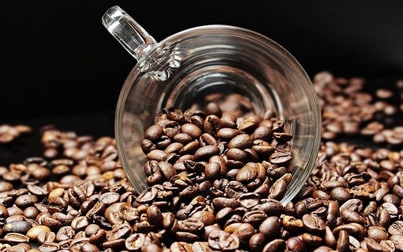 Cafe & Coffee Shop  business for sale in St Lucia - Image 1