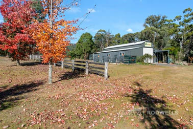 2500 MANSFIELD-WHITFIELD ROAD Tolmie VIC 3723 - Image 3