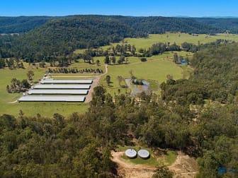 2050 Upper Mongogarie Road Upper Mongogarie NSW 2470 - Image 1