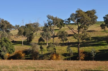 289 Spring Creek  Road Young NSW 2594 - Image 2