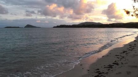 Accommodation & Tourism  business for sale in Whitsundays - Image 2