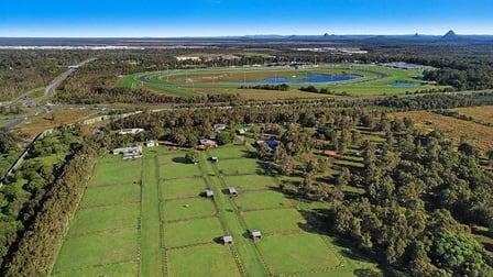17 Westaway Road Meridan Plains QLD 4551 - Image 1