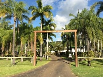 3040 Endeavour Valley Road Cooktown QLD 4895 - Image 1