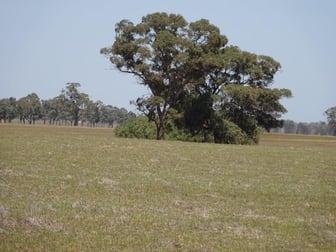 .... Cobb Highway Moama NSW 2731 - Image 1