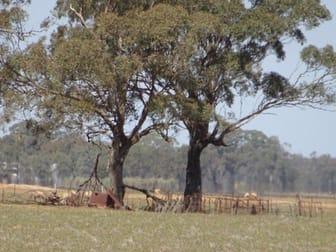 .... Cobb Highway Moama NSW 2731 - Image 2