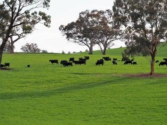 Ophir Road Bathurst NSW 2795 - Image 1
