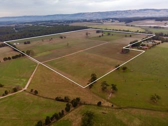 139 acres Stuhrs Road Darnum VIC 3822 - Image 1