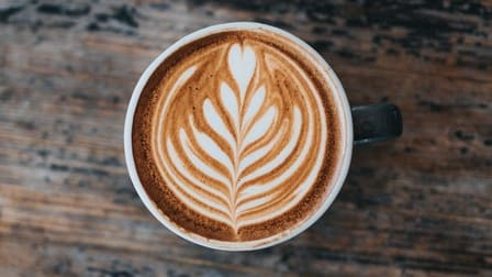 Food, Beverage & Hospitality  business for sale in Mosman - Image 2