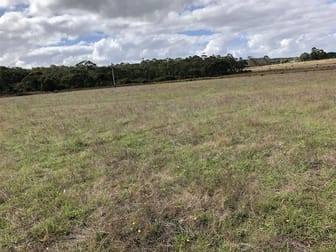 Lot 10281 Pemberton Northcliffe Road Northcliffe WA 6262 - Image 3
