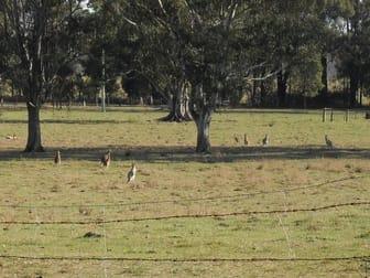 160 Crawfords Road Casino NSW 2470 - Image 2