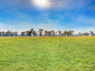 3055 Canyonleigh Road Sutton Forest NSW 2577 - Image 2